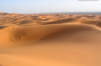 Dune deserto del Sahara – Marocco 34