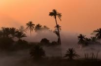 Tramonto sul Nilo – Tramonti 65